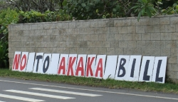 Ku`e against Akaka Bill in Kailua 2